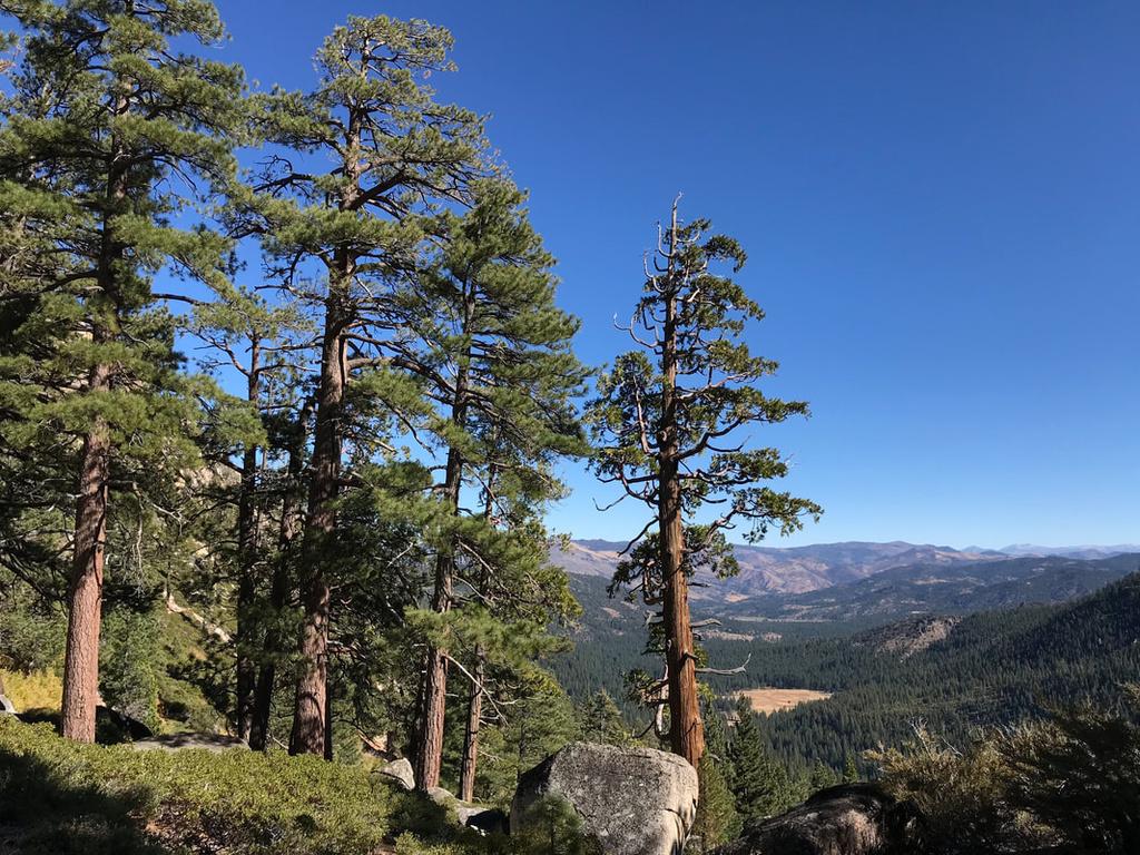 Tahoe to Mammoth Trail - looking for singletrack-yoj5f5lsth-5vi7c7rtcig_orig.jpg