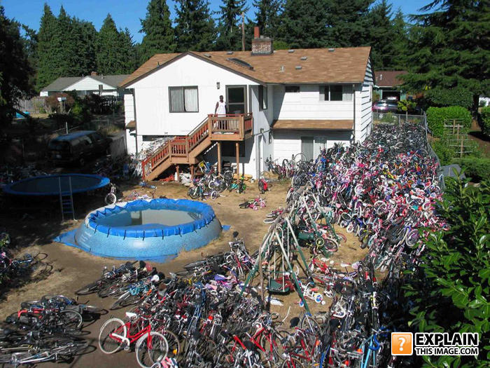 Do you ever move your bike to the living room-yourbikesal9.jpg