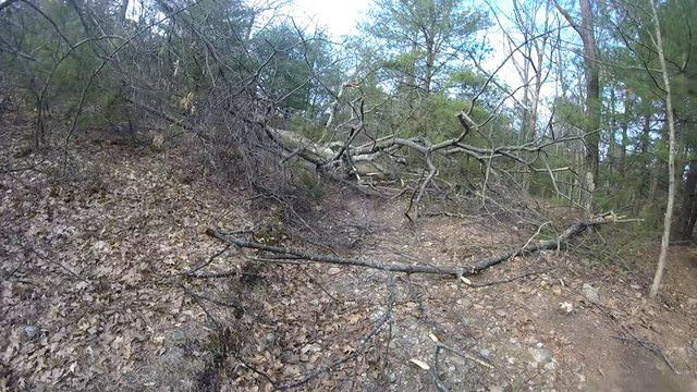 MA Trails Picture Thread-zseeksil.jpg