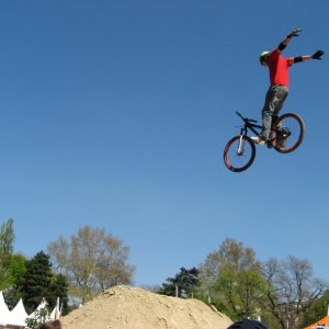 Vienna Air King dirt jump contest pics