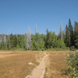 Stanford_Rock_Tahoe_Rim_Trail_Loop_102