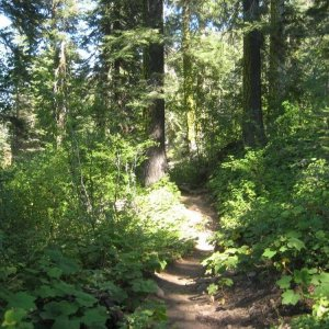 Stanford_Rock_Tahoe_Rim_Trail_Loop_112