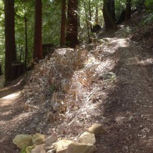 El Corte de Madera - Switchback on the Crossover Trail