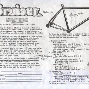 Anyone remember the Bruiser?