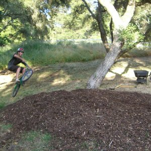 Wood Chip Step Up in backyard