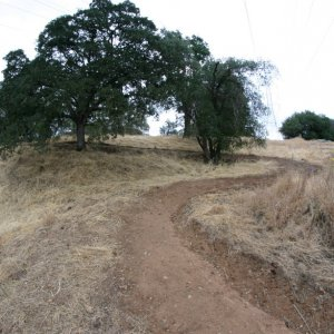 Folsom Cyclebration: NEW XC course through the PRISON and ZOO!