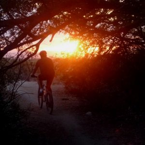 post your bike-related silhouette pics - sunset/sunrise