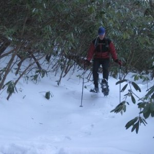 DuPont Trail Conditions- Jan 31