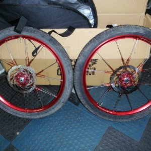 Green or red anodized wheelset,anyone going with this color